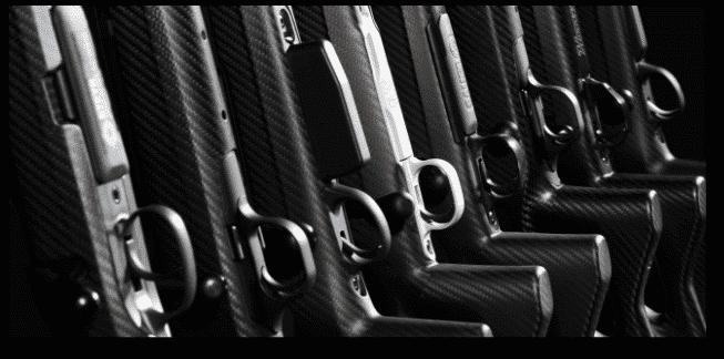 Gewehrschäfte der FBT Familie